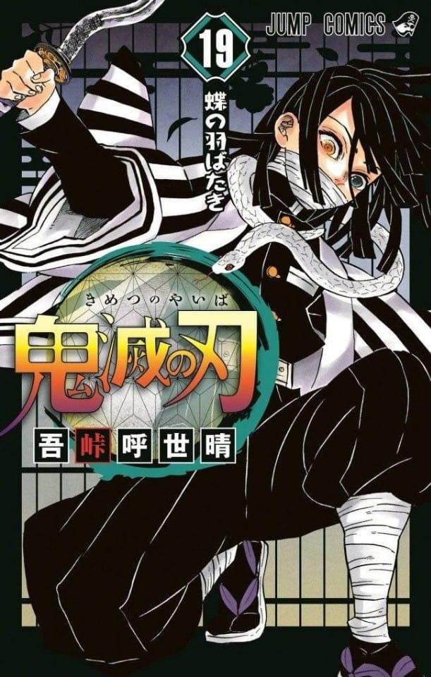 kimetsu no yaiba tomo 19